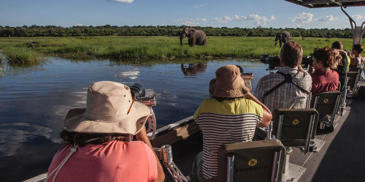 Bespoke Safari Experiences